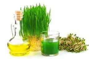 Herstellung von Weizenkeimöl